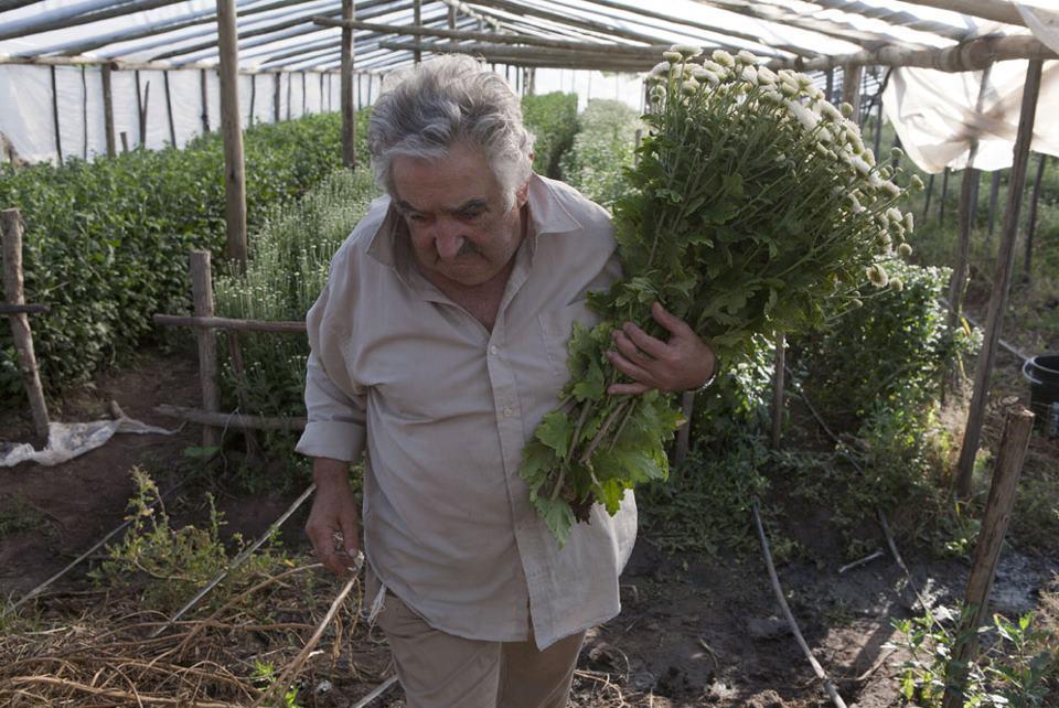 "José ""Pepe"" Mujica working in his garden"